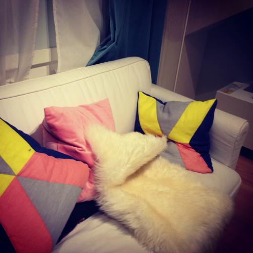 Inspiration bei IKEA-Sofa Kissen