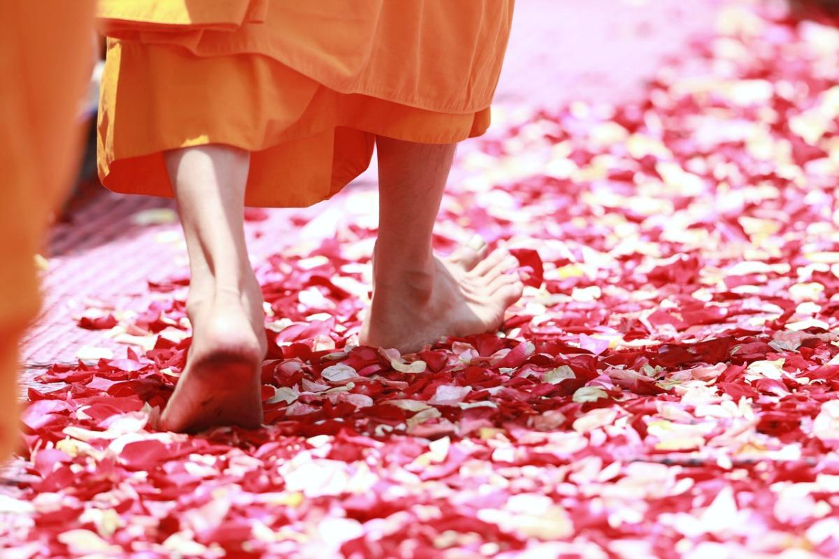 yoga festivals und messen 2016